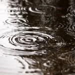 梅雨と秋雨の違いって?見た目の違いがほとんどない!?