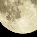 お月見の由来とは?子供たちにもわかりやすく説明していこう!
