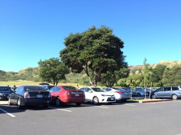 風の盆 駐車場