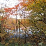 紅葉の美しい青森県!見頃はいつ?オススメの紅葉スポットとは?