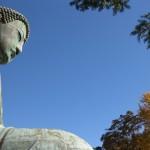 鎌倉の紅葉は2015年も要チェック!オススメの場所をご紹介します!