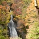 紅葉を群馬県で見るならここがおすすめ!絶好の紅葉スポットとは?