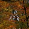 紅葉を山形県で見るなら知っておきたい名所と見頃の時期をご紹介