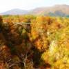 紅葉が綺麗に見られる宮城県の名所はどこなのかをご紹介します!